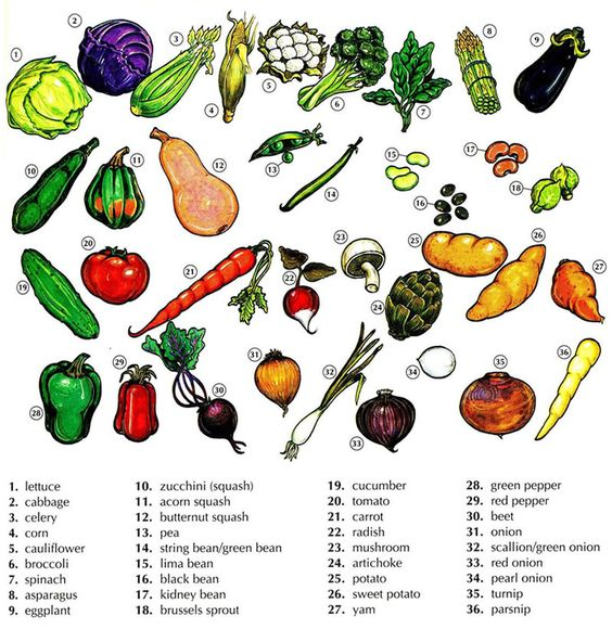 vocab-vegetables